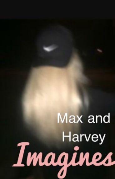 Imagines {Max and Harvey Mills x Reader}