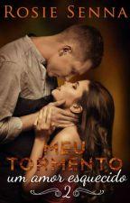 MEU TORMENTO 02 - um amor esquecido by RosieSenna