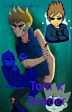 Tom × Reader by harpoonedd