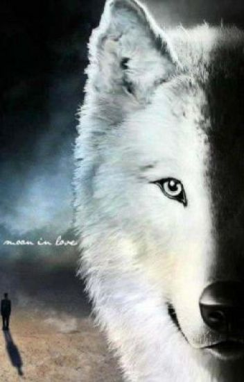 The New She-wolf(werewolf love story)