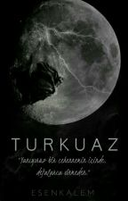 TURKUAZ by esenkalem