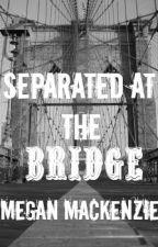 Separated At The Bridge by DivergentandWWEfan59
