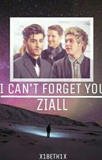 I Can't Forget You | Z.H by x1beth1x