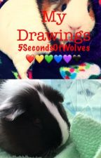 My Drawings by 5SecondsOFWolves
