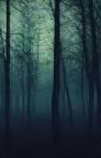 The Night Assasin by Solitarypotato