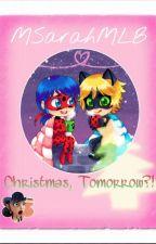 Christmas, Tomorrow?! (Miraculous Ladybug One-Shot) MSarahMLB by MSarahMLB