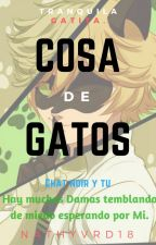Cosa de Gatos -Cat Noir y Tu- by NathyVRD18