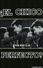 ¿EL CHICO PERFECTO? ( SHAWN MENDES Y CAMILA CABELLO  ) ❤SHAWMILA❤ by LITTLE_MUFFIN24