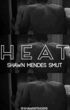 HEAT (Shawn Mendes Smut/Dirty Fanfiction) by shawnsfingers