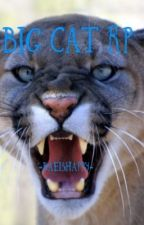 Big Cat RP  by -BaeIsHappy-