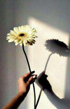 deмιan♖ by solace__