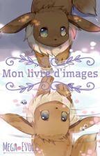 Mon livre d'images [Tome 2 - En cours] by Mega-Evoli