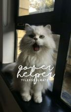 Cover Helper by tylersoulmate