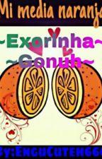 Mi media naranja-exorinha y gonuh by EnguCuteh666