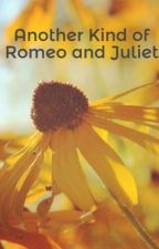 Another Kind of Romeo and Juliet by BriannaGraceDe