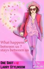 What happens between us? stays between us {One Shot Larry Stylinson +18} by aljokar_blut