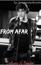 From Afar// Calum Hood x Reader by spreadyourawkwardnes