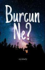 Burcun ne? #ilmelistan by Visserna