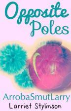 ''Opposite Poles''  (Larriet Stylinson) by ArrobaSmutLarry