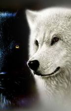 Him, Her. The White and Black Wolves. by RoseKeeper