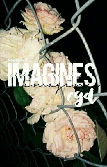 Imagines; DT