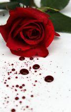 Rosas al piso by AlejandroAlapizco