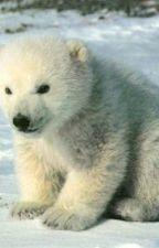 Lost Polar Bear by MarcellaMoorcroft