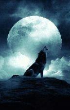 L'Alpha et la fille de la lune  by PlumeDeSoie