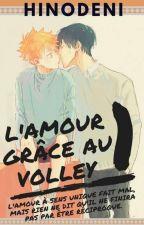 L'amour grâce au Volley 1. [KageHina|Haikyuu!!|FR] [Terminé] by OtakuFolle