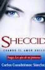 Sheccid cuando el amor duele by alesandra95