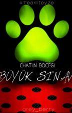 Chat'in Böceği:Büyük Sınav by grey_berry