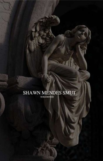 Shawn Mendes Smut