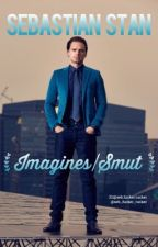 Sebastian Stan Imagines|Smut  by tattoedxheart
