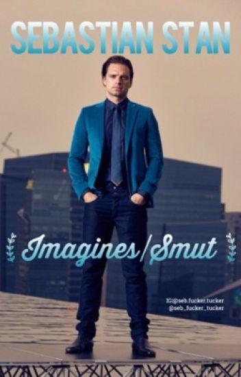 Sebastian Stan Imagines|Smut