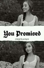 you promised ♡ peybrina [book 1] by criesinlucaya