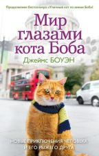 """Мир глазами кота Боба"" Джеймс Боуэн by EkaterinaElugacheva"