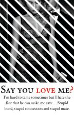 Say you love me (Short Story) by barolicious