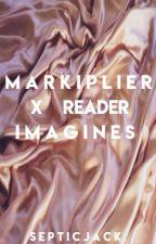 ღMarkiplier X reader imaginesღ by septicjack