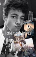 A little time in NY (Cameron Dallas y tu) PRIMERA TEMPORADA by lumateo1