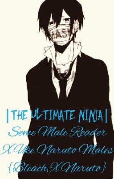   The Ultimate  Ninja   Seme Male Reader x Uke Kakashi {Bleach x Naruto}