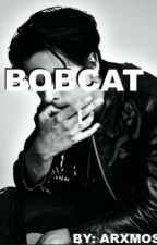 Bobcat by arxmos