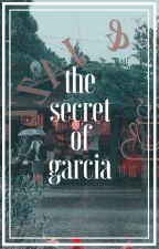 The Secret of Garcia   Fairy Tail by ChocoDarling23