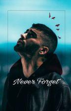 Never Forget - Zayn Malik | T2 by zayn217