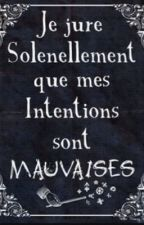 Les maraudeurs  by lilyanfosso