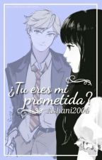tu eres mi prometida? adrien/chat noir x tu by ashani2004