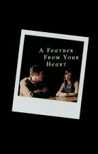 A Feather From Your Heart [Barry Allen And Catlin Snow]   Snowbarry Fanfiction by SnowbarryOlicity21
