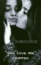 """YOU LOVE ME"" CAMREN by camrensecretlovesong"