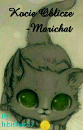 Kocie Oblicze Marichat 20 Kot Vs Ogórek I Densy Wattpad