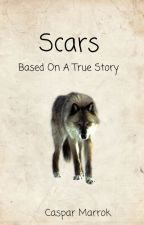 Scars by casparmarrok