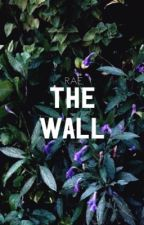 wall; n.s by rae-narry